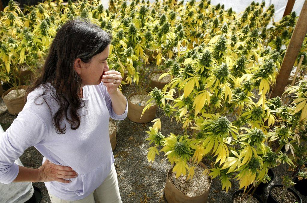 How To Smell Proof A Grow Room